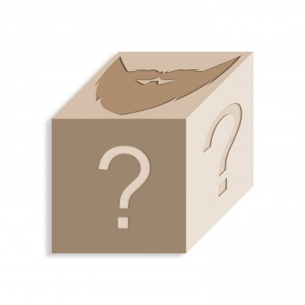 Mystery Box Skägg