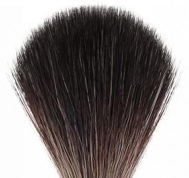 rakborste black badger