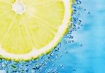 citrusdofter