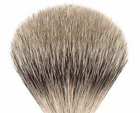 rakborste silvertip badger